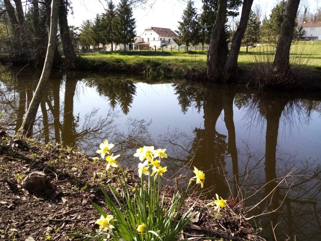 la laiterie depuis l'étang