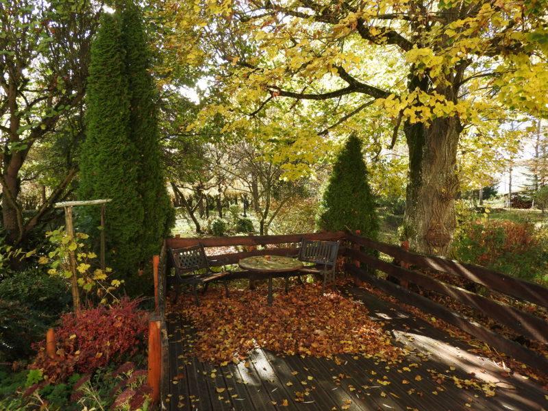 la terrasse belle à toutes saisons