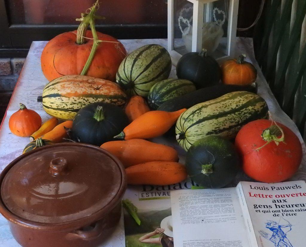 Petite moisson de légumes d'automne