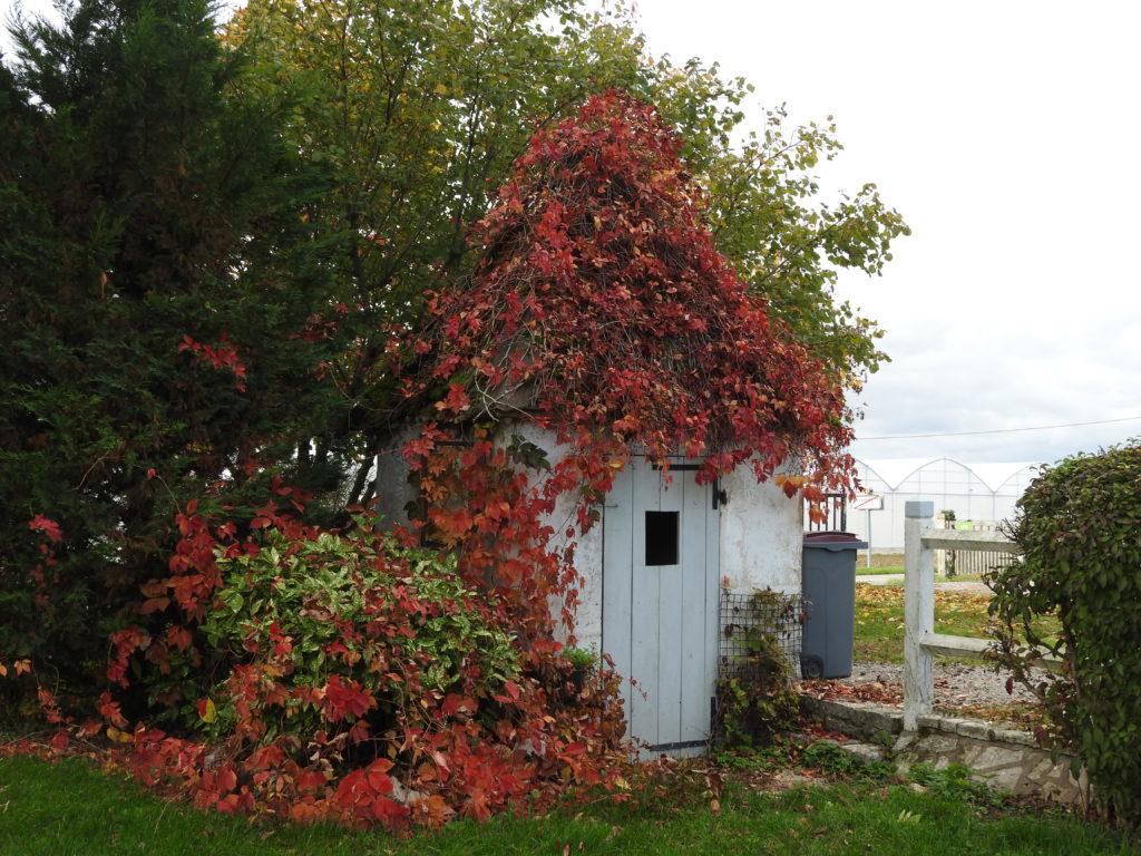 La fameuse cabane au fond du jardin....