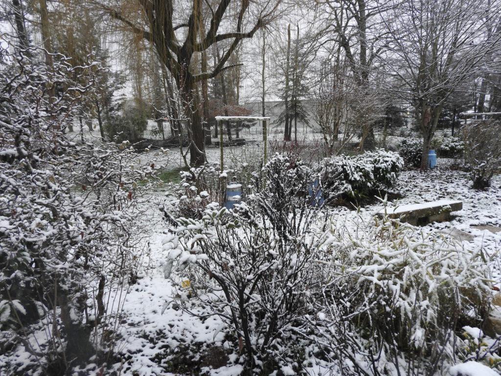 Le parc recouvert de neige