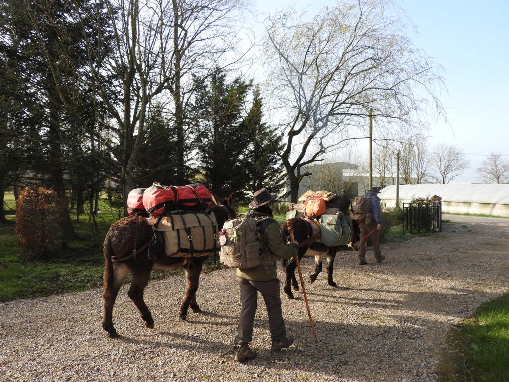 l'accueil des pélerins accompagnés d'ânes