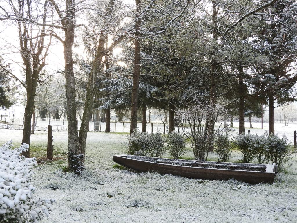 Lumière du matin avec la fraicheur de la neige