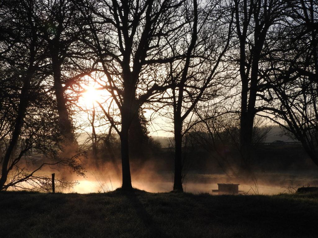 brume du matin sur l'étang
